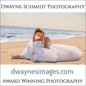 Dwayne Schmidt Wedding Photography
